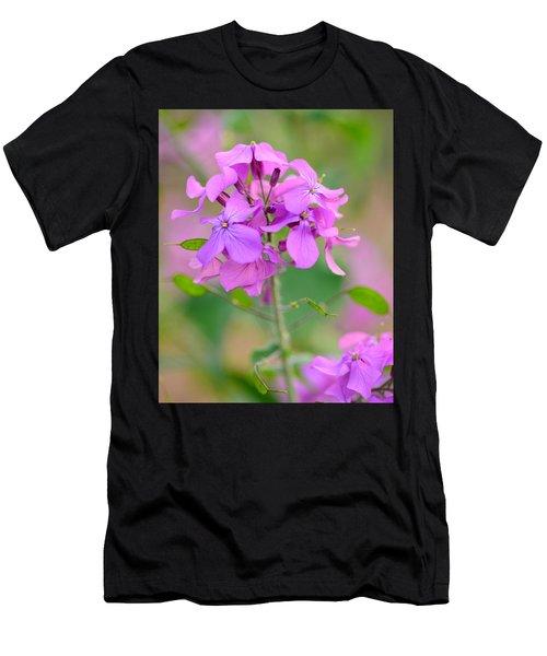 Purple Star Phlox Men's T-Shirt (Athletic Fit)