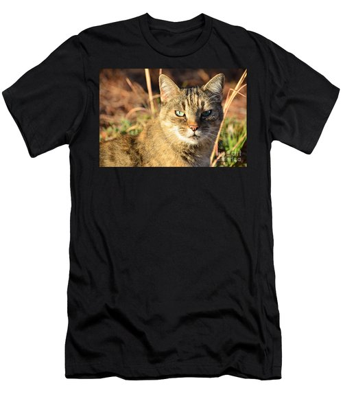 Purr-fect Kitty Cat Friend Men's T-Shirt (Athletic Fit)