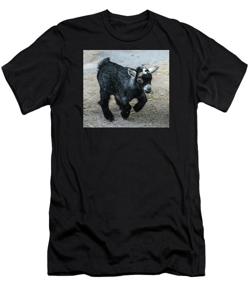 Pygmy Goat Kid Men's T-Shirt (Athletic Fit)