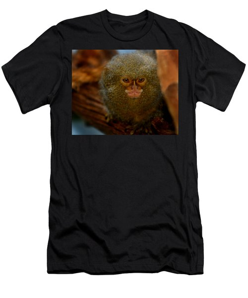 Pygmy Marmoset Men's T-Shirt (Athletic Fit)