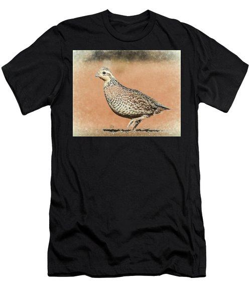 Quail Men's T-Shirt (Athletic Fit)