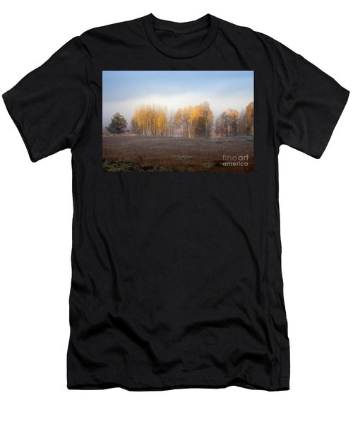 Quaking Aspen Trees At Dawn, Grand Teton National Park, Wyoming Men's T-Shirt (Athletic Fit)