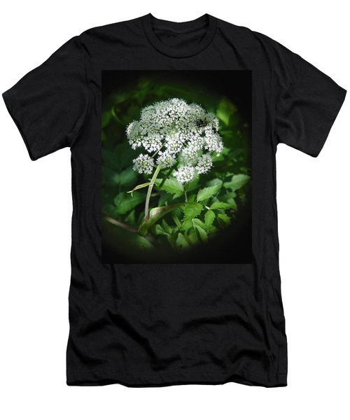 Queen Ann Lace Men's T-Shirt (Athletic Fit)