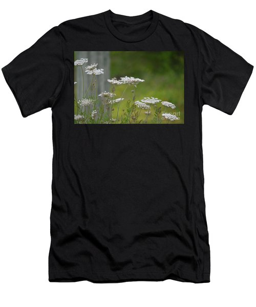 Queen Anne Lace Wildflowers Men's T-Shirt (Athletic Fit)