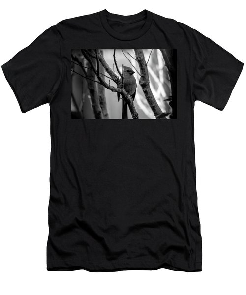 Quite Bird In The Tree Men's T-Shirt (Athletic Fit)