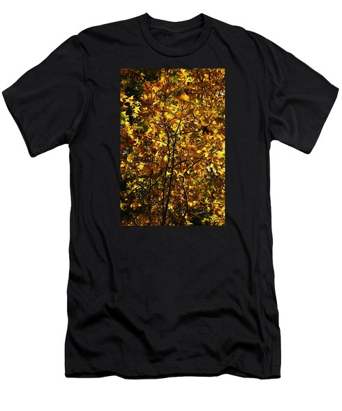 Men's T-Shirt (Slim Fit) featuring the photograph Radiant Leaves by Karen Harrison