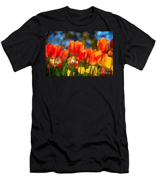 Radiant Tulips Men's T-Shirt (Athletic Fit)