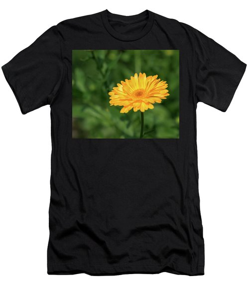 Radiant Summer Flower Soaking It Up Men's T-Shirt (Athletic Fit)