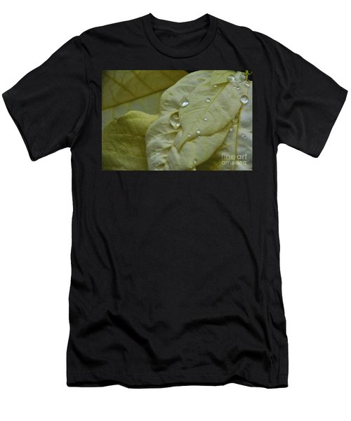 Rain Drops On A  White Poinsettia Men's T-Shirt (Athletic Fit)