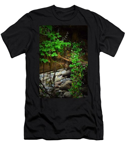 Rain Forest Walk Men's T-Shirt (Athletic Fit)