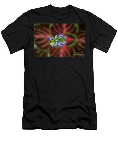 Rainbow Coleus Men's T-Shirt (Athletic Fit)