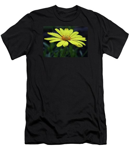 Men's T-Shirt (Slim Fit) featuring the photograph Raindrops On Daisy by Judy Vincent