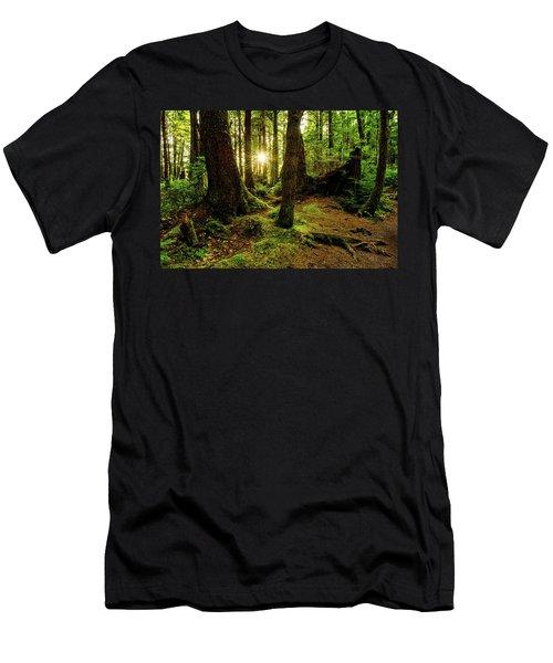 Rainforest Path Men's T-Shirt (Athletic Fit)