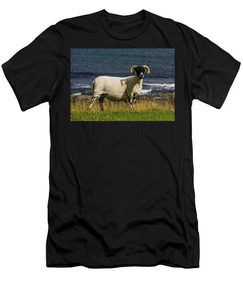 Ram With Attitude Men's T-Shirt (Athletic Fit)