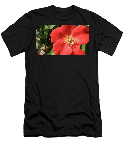 Men's T-Shirt (Slim Fit) featuring the photograph Rambling Rose Watercolor by Donna G Smith