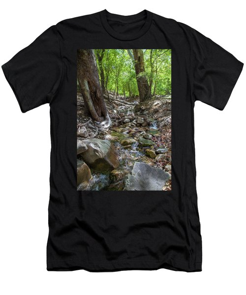 Ramsey Canyon Preserve Men's T-Shirt (Athletic Fit)