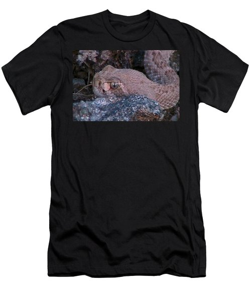 Rattlesnake Portrait Men's T-Shirt (Athletic Fit)