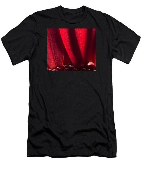 Golden Pollen Red Chrysanthemum Men's T-Shirt (Athletic Fit)