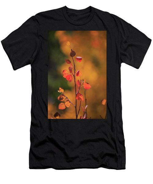 Men's T-Shirt (Athletic Fit) featuring the photograph Red And Gold by David Chandler