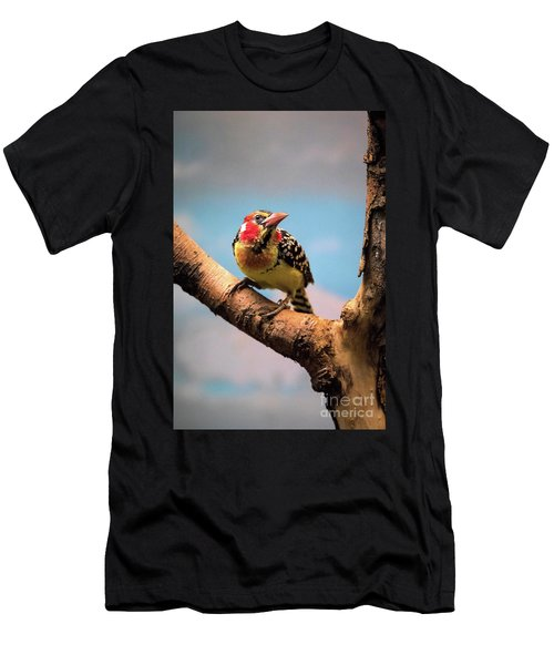 Red And Yellow Barbet Men's T-Shirt (Athletic Fit)