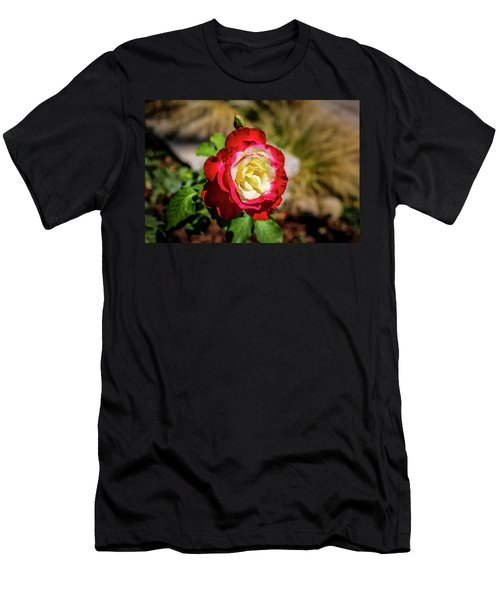 Red And Yellow Rose Men's T-Shirt (Athletic Fit)