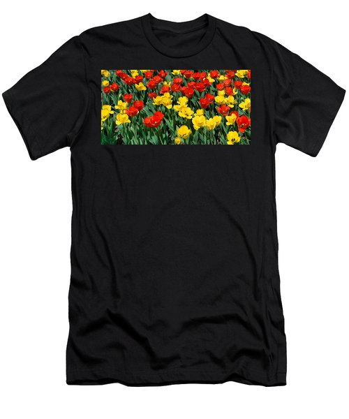 Red And Yellow Tulips  Naperville Illinois Men's T-Shirt (Athletic Fit)