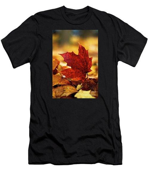 Red Autumn Men's T-Shirt (Athletic Fit)
