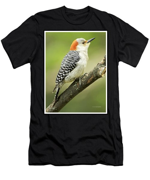 Red Bellied Woodpecker, Female On Tree Branch Men's T-Shirt (Athletic Fit)