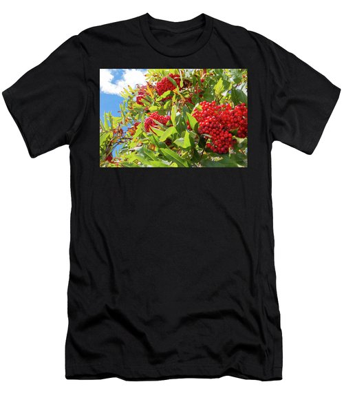 Red Berries, Blue Skies Men's T-Shirt (Athletic Fit)