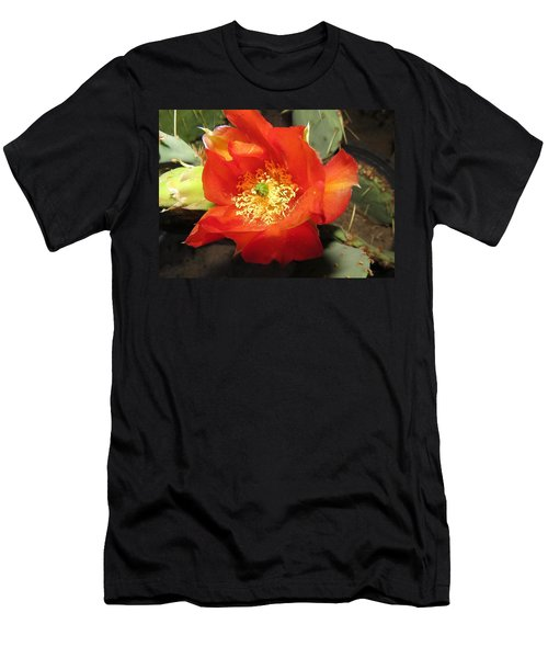 Red Bloom 1 - Prickly Pear Cactus Men's T-Shirt (Athletic Fit)