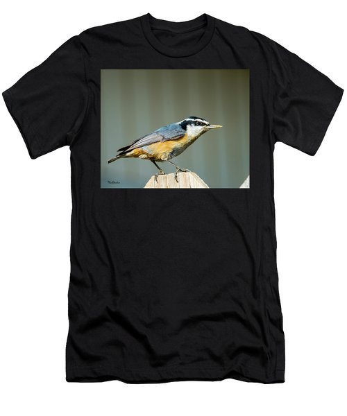 Red-breasted Nuthatch Men's T-Shirt (Athletic Fit)