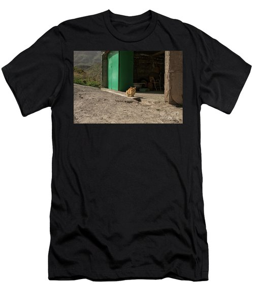 Red Cat And Green Shed Men's T-Shirt (Slim Fit) by Patricia Hofmeester