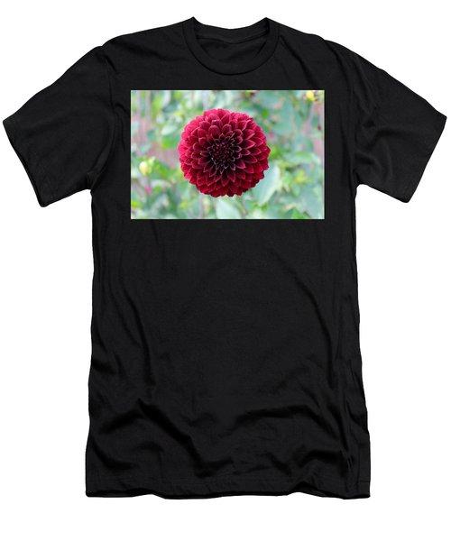 Red  Dahlia Men's T-Shirt (Athletic Fit)