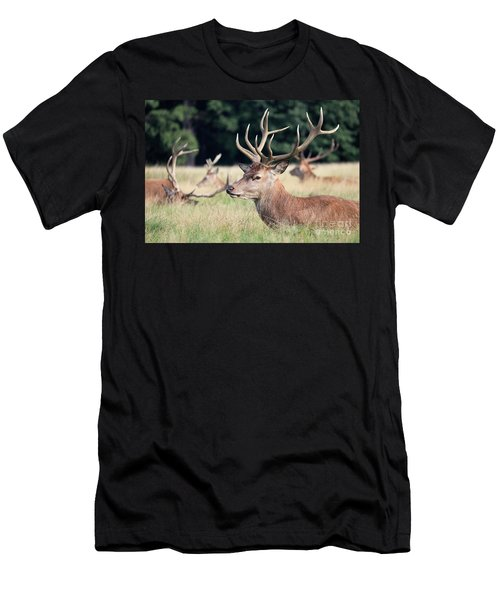 Red Deer Stags Richmond Park Men's T-Shirt (Athletic Fit)