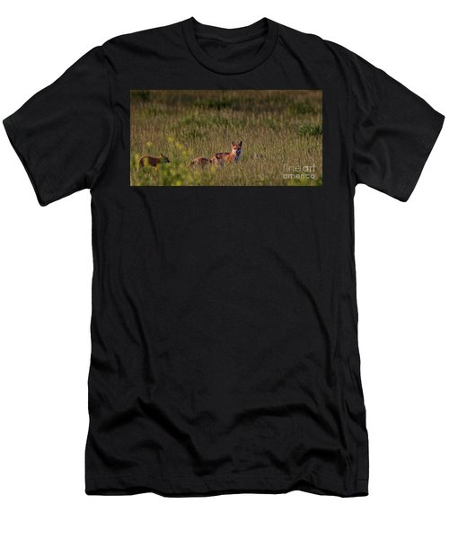 Red Fox Family Men's T-Shirt (Athletic Fit)