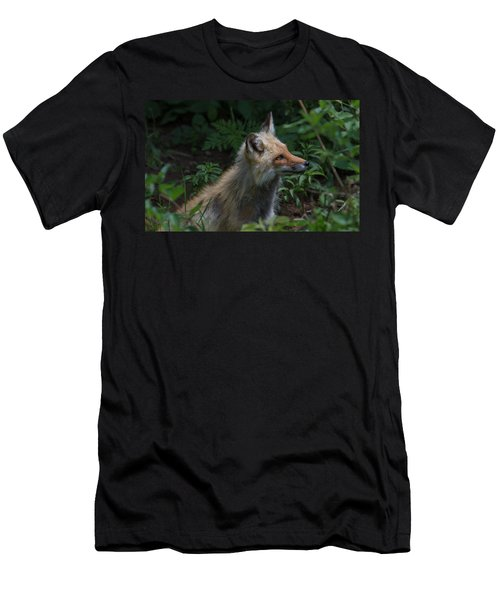 Red Fox In The Forest Men's T-Shirt (Athletic Fit)