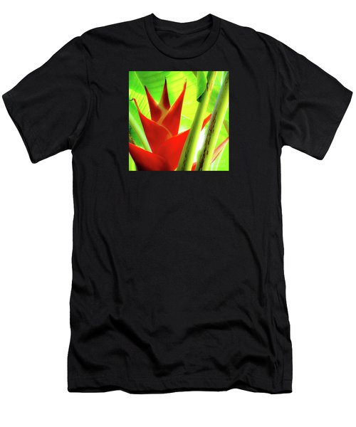 Red Heliconia Plant Men's T-Shirt (Athletic Fit)
