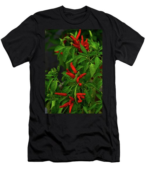 Red Hot Chili Peppers Men's T-Shirt (Athletic Fit)