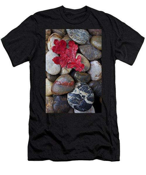 Red Leaf Wet Stones Men's T-Shirt (Slim Fit) by Garry Gay