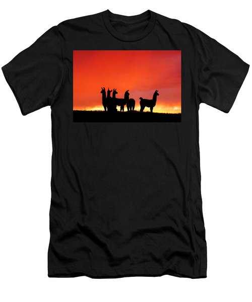 Red Llama Sunset 1 Men's T-Shirt (Athletic Fit)