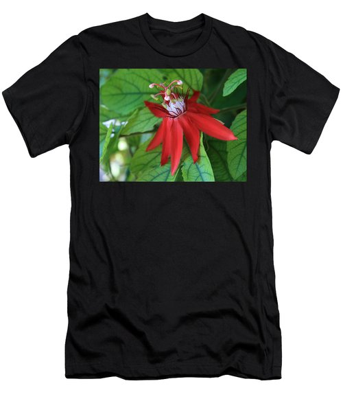 Men's T-Shirt (Slim Fit) featuring the photograph Red Passion by Marna Edwards Flavell