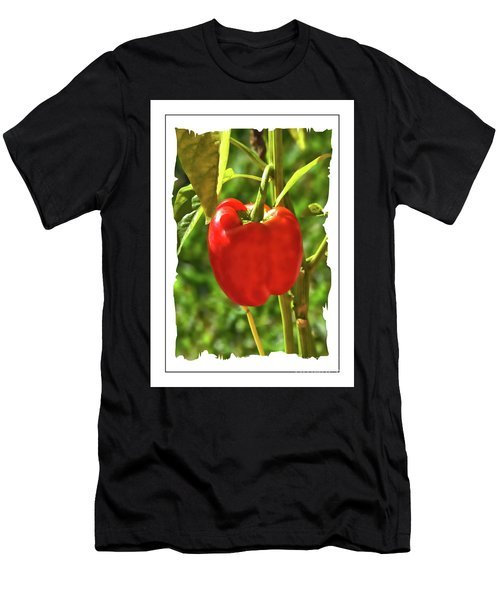 Red Pepper On The Vine Men's T-Shirt (Athletic Fit)