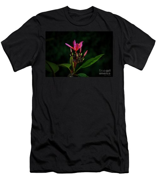 Red Plumeria Men's T-Shirt (Athletic Fit)
