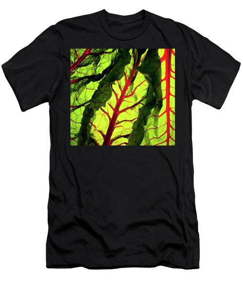 Red River Men's T-Shirt (Athletic Fit)