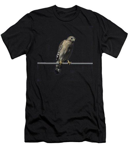 Red-shouldered Hawk Transparency Men's T-Shirt (Athletic Fit)