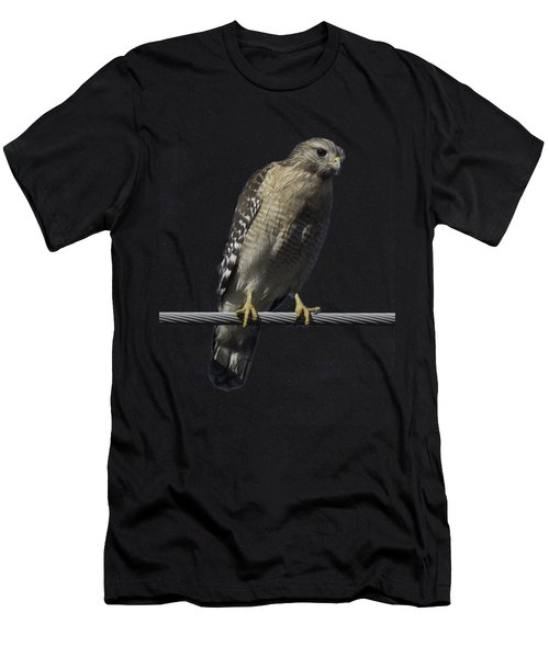 Red-shouldered Hawk Transparency Men's T-Shirt (Athletic Fit)