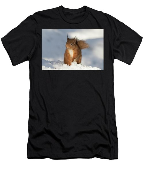 Red Squirrel In The Snow Men's T-Shirt (Athletic Fit)