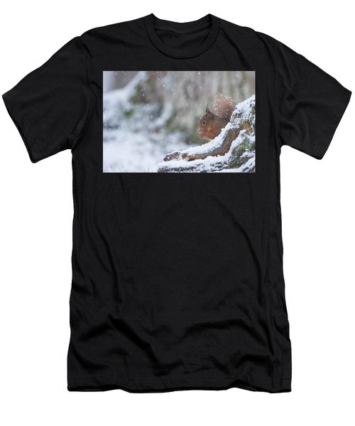 Red Squirrel On Snowy Stump Men's T-Shirt (Athletic Fit)
