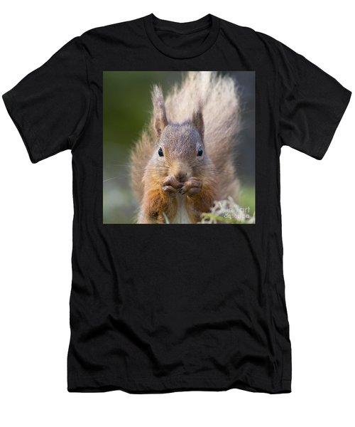 Red Squirrel - Scottish Highlands #28 Men's T-Shirt (Athletic Fit)