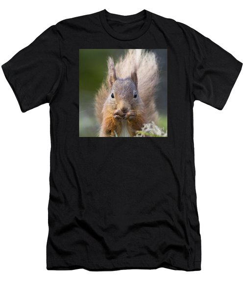 Red Squirrel - Scottish Highlands #28 Men's T-Shirt (Athletic Fit)